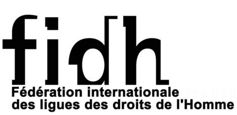 Le vrai visage des organisations des droits de l'Homme FIDH et ...   Droits de l'Homme_AGUE   Scoop.it