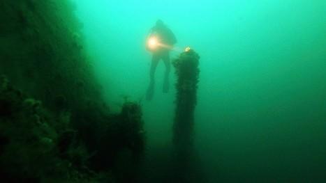 Hallan un impresionante bosque subacuático de 10.000 años - RT   ¡Sí, se puede!   Scoop.it