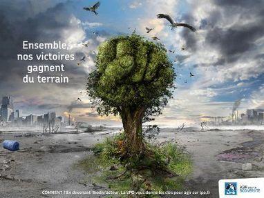 Tous Biodiv'acteurs ! - LPO | Ecology view | Scoop.it