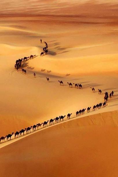 Twitter / BEAUTIFULPlCS: A camel train through the desert. ... | desert photography | Scoop.it