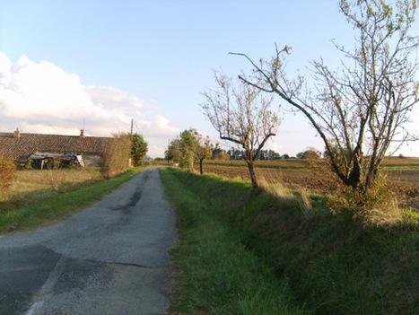 Et si on prenait une autre route... | The Blog's Revue by OlivierSC | Scoop.it