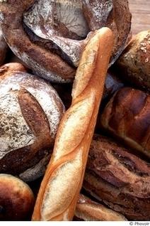 Menus santé : mangez de ce pain là ! | Destination Santé | Actu Boulangerie Patisserie Restauration Traiteur | Scoop.it