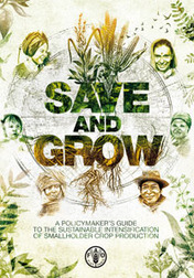 Free eBook from FAO: Save and grow - A new paradigm of agriculture (2011) | Bio { Cultural } Diversity | Scoop.it