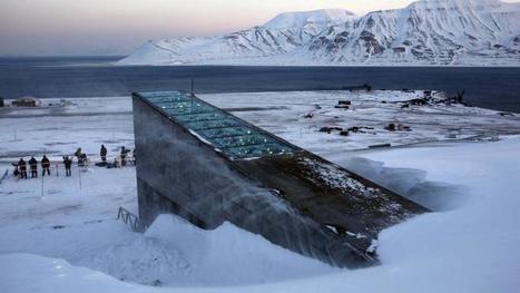 Une arche de Noé des graines en Norvège - Le Figaro   Culture scientifique et technique   Scoop.it