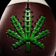 NFL May BE Thinking Of Legalizing Marijuana?! | Marijuana Legalization | Scoop.it
