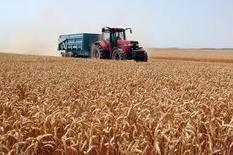 Blé, Mais, Soja : flambée du marché mondial. | agro-media.fr | agro-media.fr | actualité agroalimentaire | Scoop.it