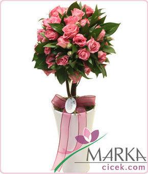 Kampanya - marka çiçek gönder, çiçek siparişi   Marka Çiçek   Scoop.it