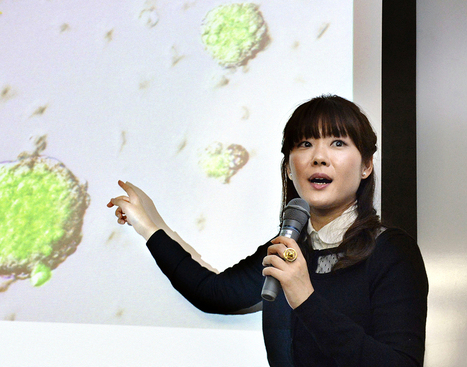 Rising Japanese scientist faked heralded stem cell research, lab says | Research Capacity-Building in Africa | Scoop.it