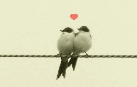 The 3 Words Your Customers Love Most | Marketing TPE | Scoop.it