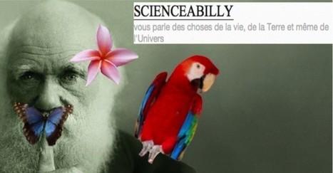 Guide de survie | scienceabilly | Scoop.it