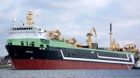 AUSTRALIA: Expert panel warns of supertrawler environmental risks | Underground News Australia | Scoop.it