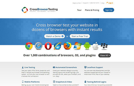 13 Website Usability Testing Tools for Developers - | Pragmatic Web Management | Scoop.it