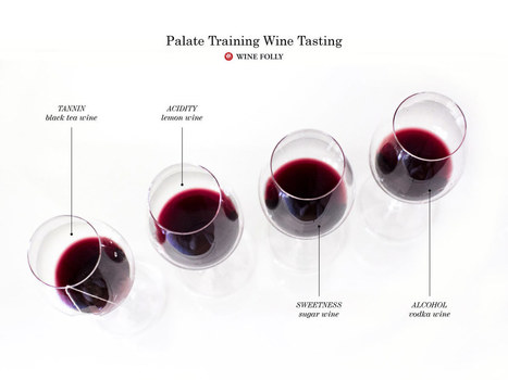 DIY Palate Training Wine Tasting | Wine Folly | @FoodMeditations Time | Scoop.it