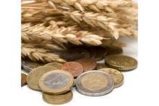 Pac 2015- 2020 : des contours déjà bien dessinés, Fiscalité-Juridique - Pleinchamp   Agriculture : économie et développement.   Scoop.it