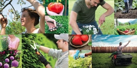Comment Jardening conjugue jardinage et collaboratif | la consommation collaborative | Scoop.it