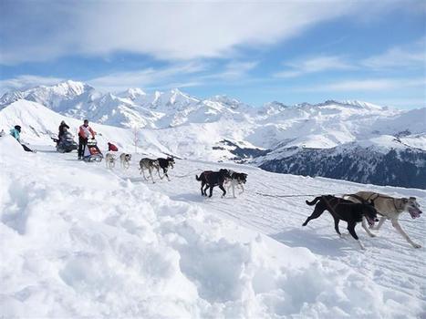 Annecy | La Grande Odyssée Savoie Mont-Blanc glisse sur les nouveautés | Stations, ski, neige et tourisme en montagne | Scoop.it