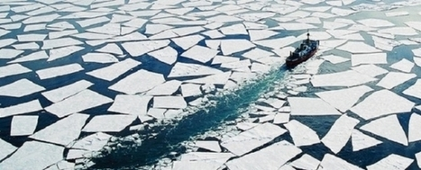 Warm Arctic Waters Emit Carbon, Though Region is Carbon Sink Overall | Sustain Our Earth | Scoop.it
