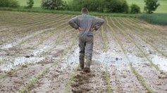 Les agriculteurs de Haute Garonne bénéficieront d'aides ... - France 3 | Revue de Presse du Caf des Vallées | Scoop.it