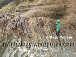 Beach 4, Olympic Coast: folded rocks, overturned turbidite beds, an angular unconformity, seastacks, and a great beach walk. | Conformable Contacts | Scoop.it