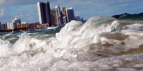 L'ONU annonce une initiative pour la protection des océans | La préservation de l'environnement marin | Scoop.it