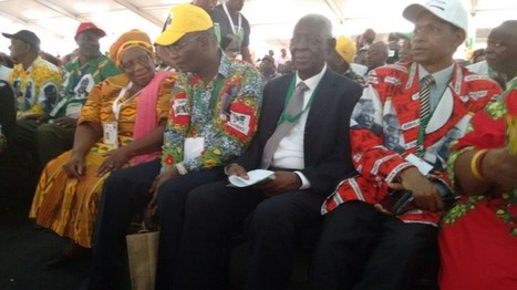 Zanu PF Congress Update: Mujuru a 'thief', says Mugabe | AfricaNewsDesk.com | NGOs in Human Rights, Peace and Development | Scoop.it