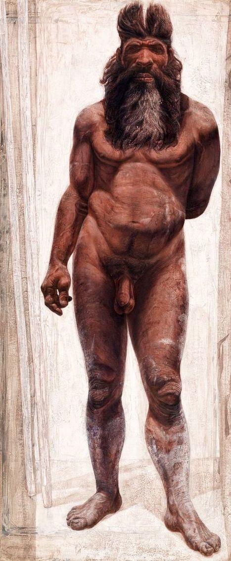 Los humanos de Atapuerca eran más corpulentos que los neandertales, pero con menor cerebro | Enseñar Geografía e Historia en Secundaria | Scoop.it