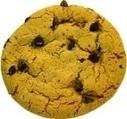 Wat zijn cookies? | Consumentenbond | duynsteepolak | Scoop.it