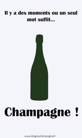 """L' appellation   L'appellation """"Champagne"""" n'est-elle pas une stratégie marketing pour que les producteurs de champagnes français restent compétitfs?   Scoop.it"""