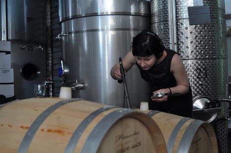 Jo Burzynska at Macchialupa Wine Cellar, Montefusco | DESARTSONNANTS - CRÉATION SONORE ET ENVIRONNEMENT - ENVIRONMENTAL SOUND ART - PAYSAGES ET ECOLOGIE SONORE | Scoop.it