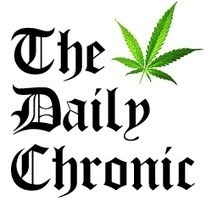 Festivals & Rallies Archives - The Daily Chronic | medical marijuana | Scoop.it