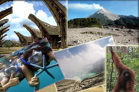Indonesia Tour operator for mount Bromo Ijen , Yogyakarta. Wildlife and Diving | Discover Bromo | Scoop.it