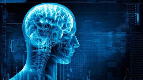 Comment le cerveau réagit-il au contact de la pub? | Marketing | Scoop.it