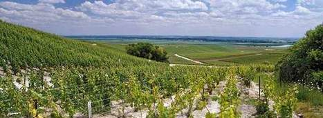 Terroir Gives Champagne Its Soul | Champagne Chronicles | Scoop.it