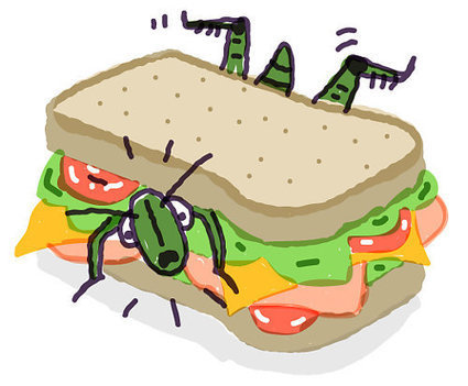 You May Be Eating Bug Burgers Sooner Than You Think | Entomophagy: Edible Insects and the Future of Food | Scoop.it