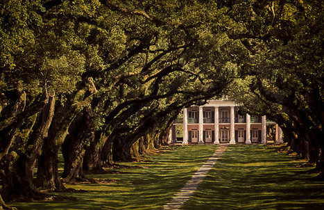 Oak Alley The by TheGardenImage | Oak Alley Plantation: Things to see! | Scoop.it