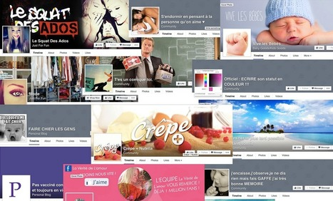 Qui se cache derrière les grosses pages Facebook françaises? | CommunityManagementActus | Scoop.it