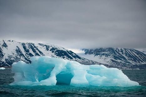 De l'Arctique au Sahel : mobilisons-nous contre le dérèglement climatique | The Blog's Revue by OlivierSC | Scoop.it