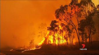 Ongoing Australian Bush Fires « World Chaos | Australian Ecosystems | Scoop.it