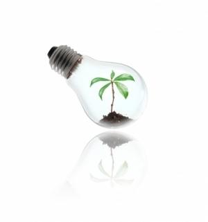 Stimuler l'innovation dans les technologies vertes: un rapport del'OCDE | Développement durable et efficacité énergétique | Scoop.it