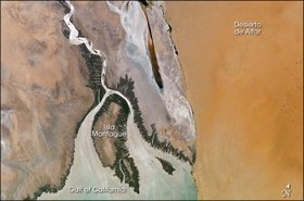 Colorado River Delta still benefiting from flood experiment | GarryRogers Biosphere News | Scoop.it