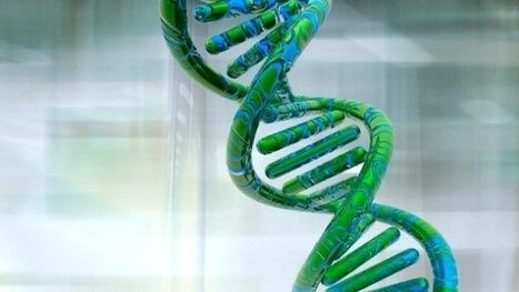 El ADN podría almacenar todo el conocimiento humano durante milenios   genetica   Scoop.it