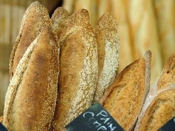 Rhône. Exclusif : le palmarès des 50 boulangers qui gagnent - Le Progrès | Produits de France | Scoop.it
