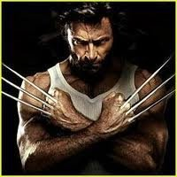 Wolverine Wallpaper| The Wolverine Movie Info | Avengers Movie Toys | Scoop.it