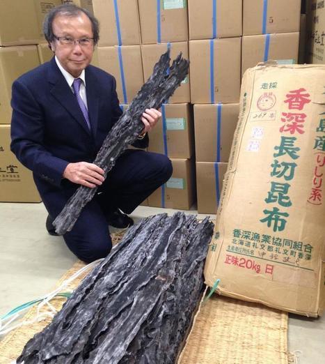 Le konbu, l'algue magique de la cuisine japonaise | Cuisine japonaise | Scoop.it