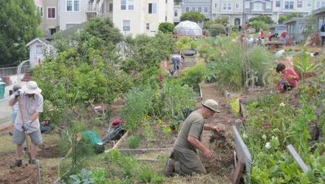Best Community Gardens In San Francisco | jardins partagés | Scoop.it