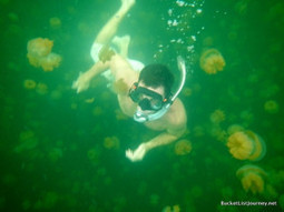 Palau: The incredible Rock Islands and Jellyfish Lake - Johnny Jet | Visit Palau | Scoop.it