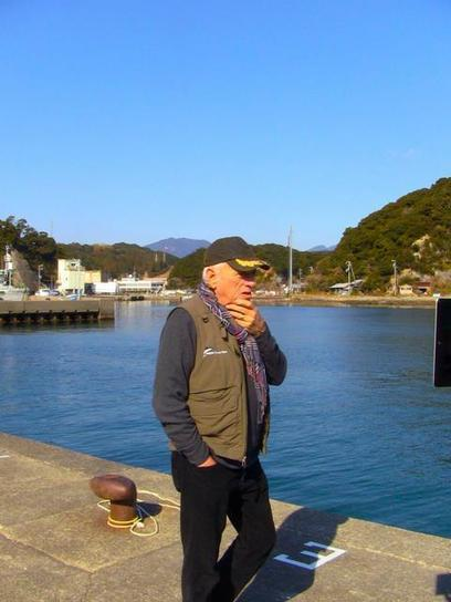 Live Stream Maybe Game Changer for Dolphins in TaijiJapan | Dolphins | Scoop.it