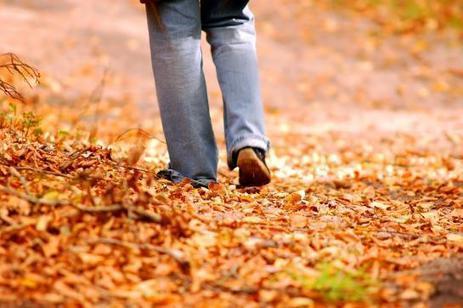 Seniors: l'exercice physique pourrait doper la mémoire | Seniors | Scoop.it