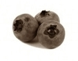 Anthocyanins in blueberries: more muscle and less fat | Ruoka | Scoop.it