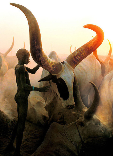 Powerful Photographs Show The Daily Life of The Dinka People Of Southern Sudan | Bibliophilie et amour des livres | Scoop.it